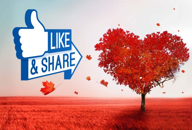 like and share vday